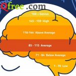 Chỉ số IQ và ảnh hưởng đến toán học?